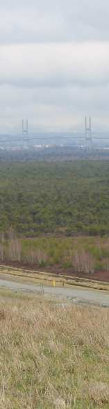 About 40 meters higher than the surrounding natural topography, the trees below are where we would be garbage.