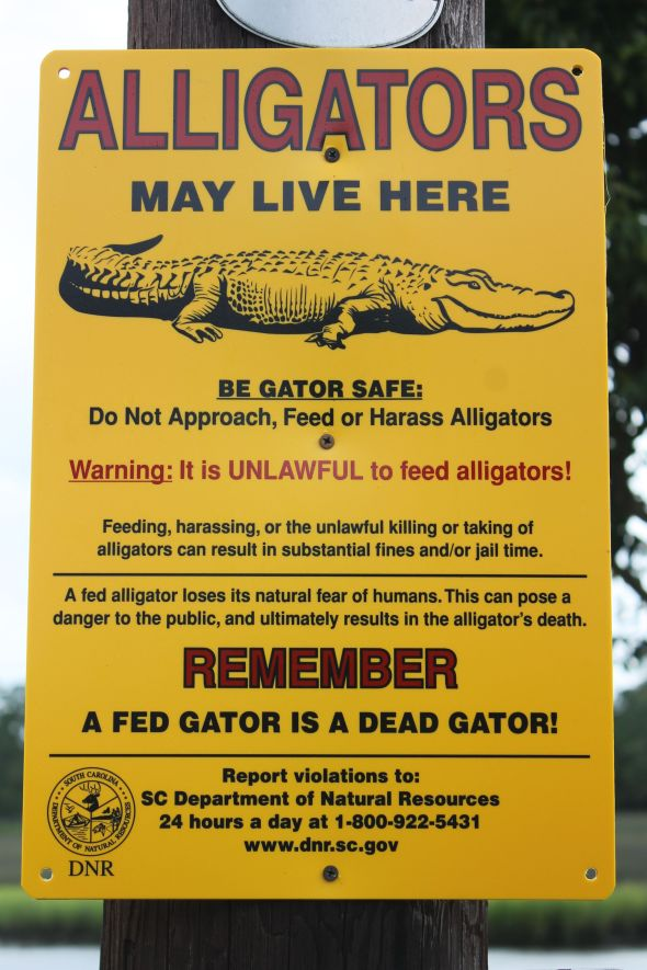 I particularly enjoy the admonishment that 'A fed gator is a dead gator.'