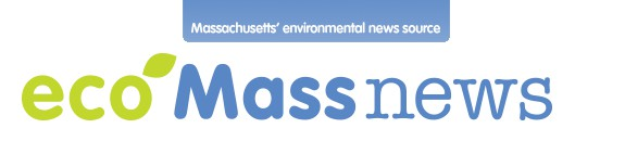 Eco Mass News