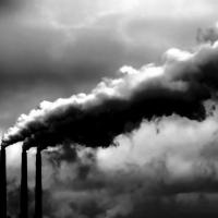 Industrial Waste vs. Municipal Waste