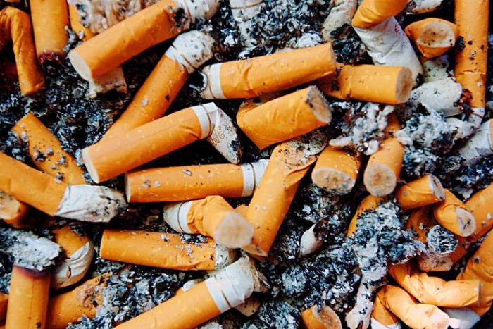 Cigarette Butts 3