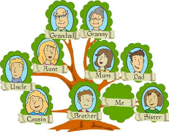 Как сделать родословную семьи на компьютере